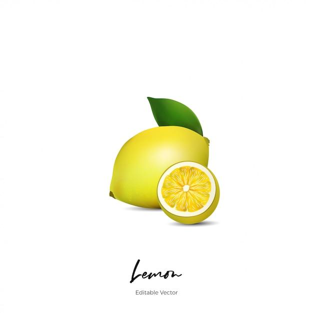Frutas de limão realista Vetor Premium