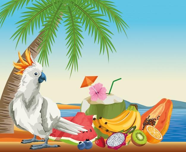 Frutas de verão e praia em estilo cartoon Vetor grátis