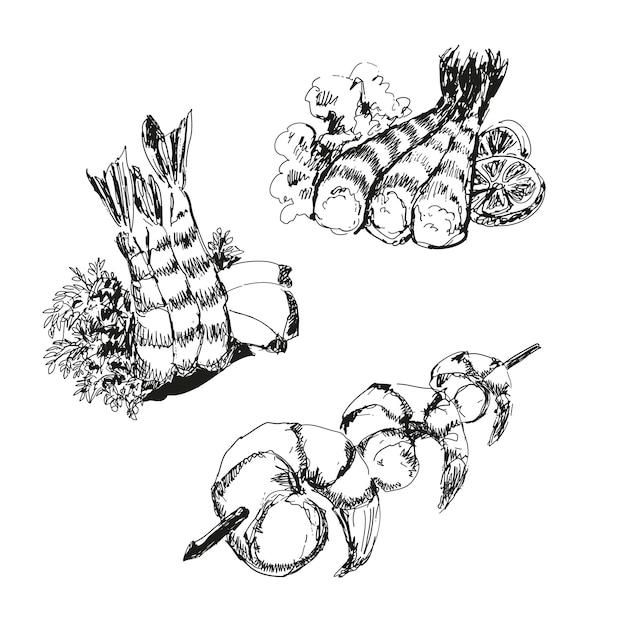 Frutos do mar. camarões conjunto de desenho Vetor Premium