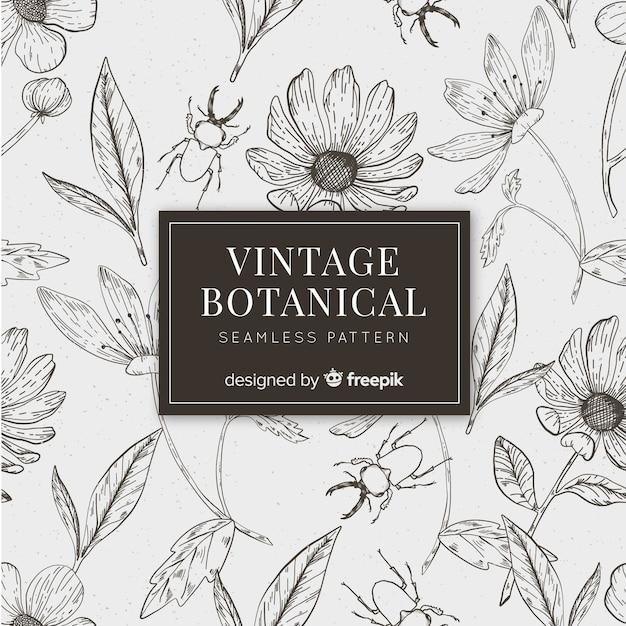 Fundo botânico de esboços vintage Vetor grátis