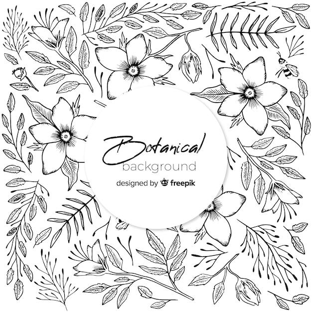 Fundo botânico vintage mão desenhada Vetor grátis