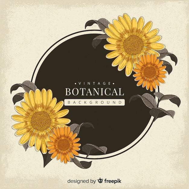 Fundo botânico vintage Vetor grátis