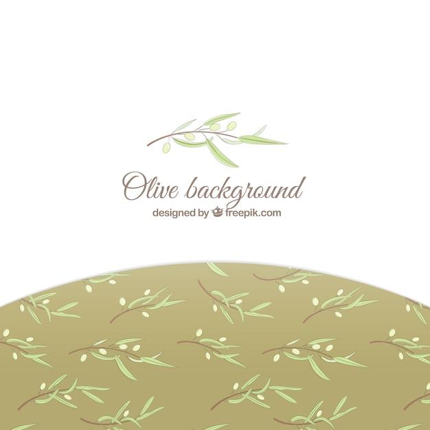 Fundo branco elegante com folhas de oliveira Vetor grátis