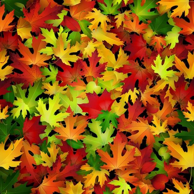Fundo com folhas de outono coloridas. Vetor Premium