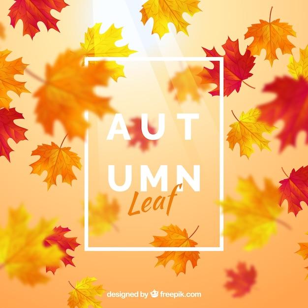 Fundo, com, outono, folha Vetor grátis