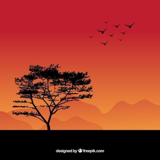 Fundo com pássaros e silhueta de árvore Vetor grátis