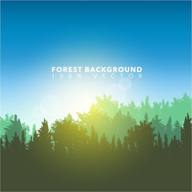 Fundo da paisagem florestal Vetor Premium
