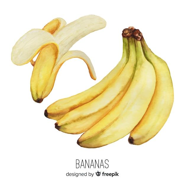 Fundo de banana realista em aquarela Vetor grátis