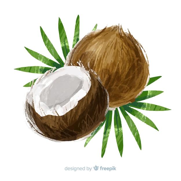 Fundo de coco em aquarela Vetor grátis