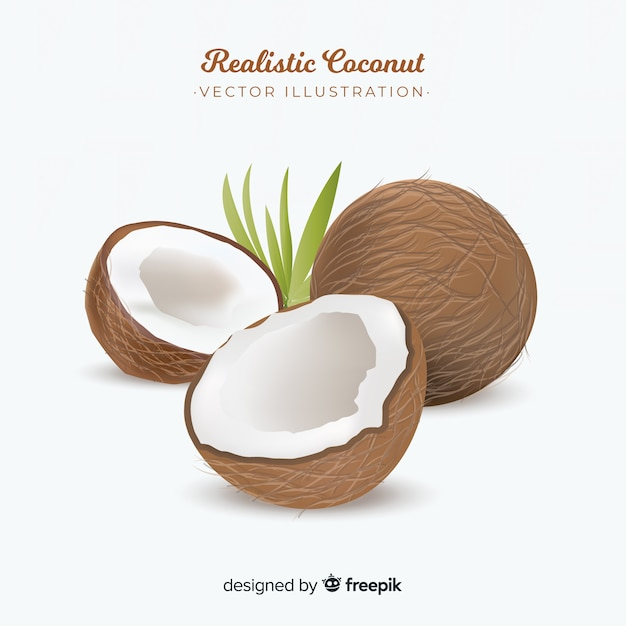 Fundo de coco realista Vetor grátis