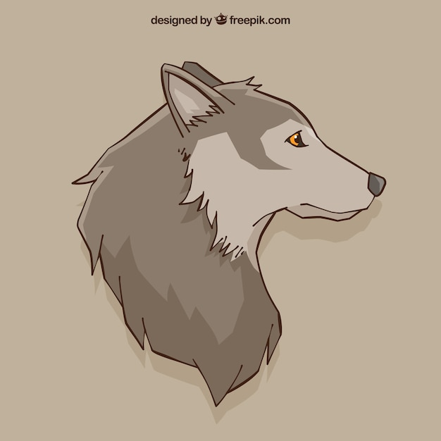Fundo De Desenho Do Lobo Vetor Gratis