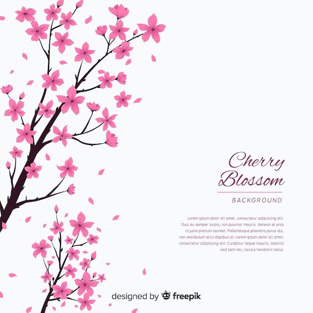 Fundo de flor de cerejeira desenhada de mão Vetor grátis