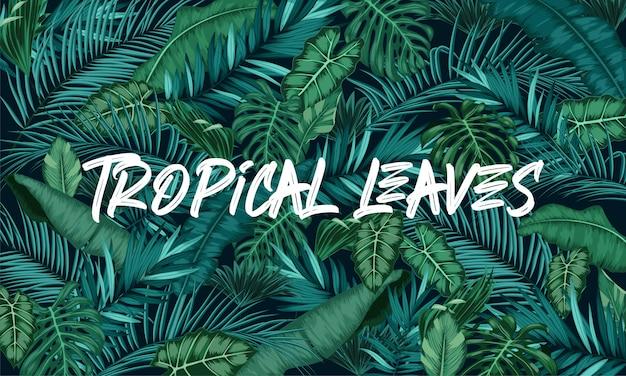 Fundo de floresta de folhas tropicais Vetor Premium