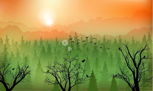 Fundo de floresta de montanha ao pôr do sol Vetor Premium