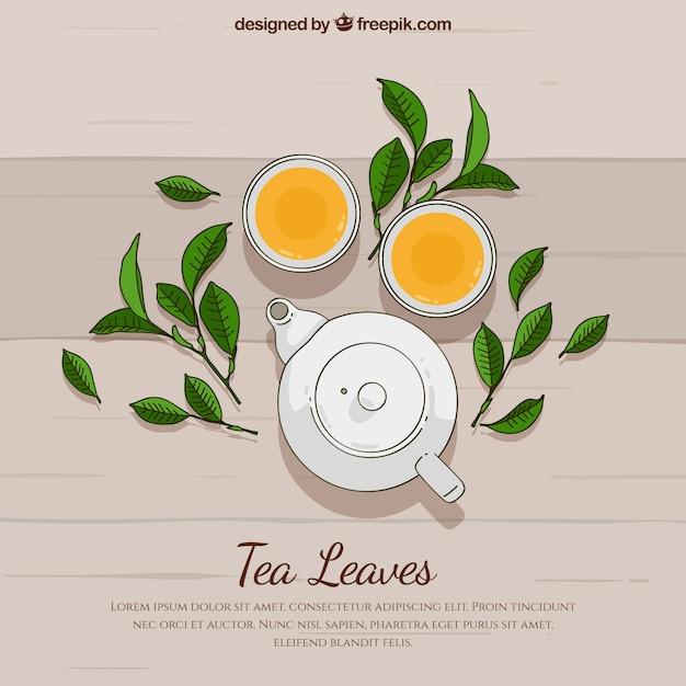 Fundo de folhas de chá de mão desenhada Vetor grátis