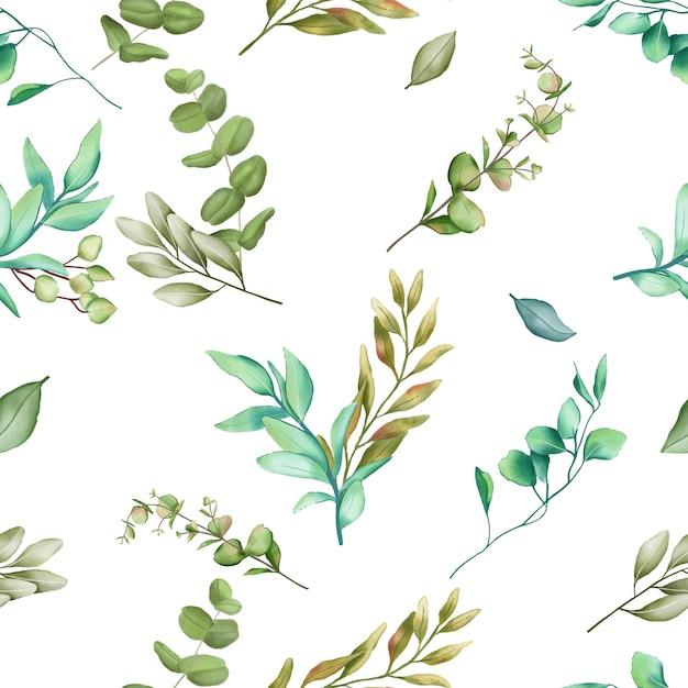 Fundo de folhas de eucalipto sem costura Vetor Premium