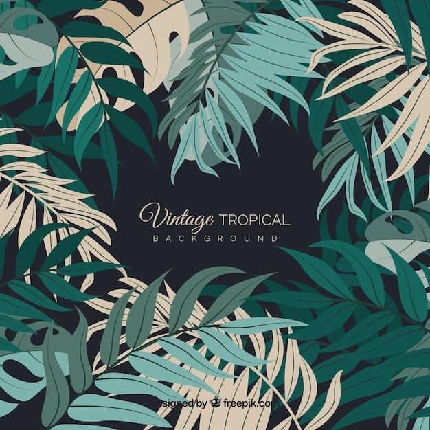 Fundo de folhas tropicais vintage Vetor grátis