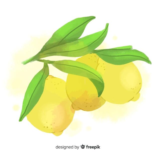 Fundo de frutas em aquarela com limões Vetor grátis