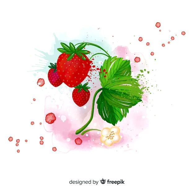 Fundo de frutas em aquarela com morangos Vetor grátis