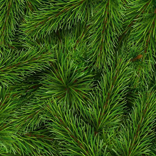 Fundo de galhos de árvore de natal. um modelo de cartão de natal ou convite para um evento. Vetor Premium