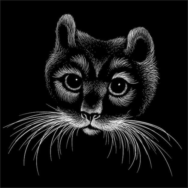 Fundo de gato bonito estilo de impressão. Vetor Premium