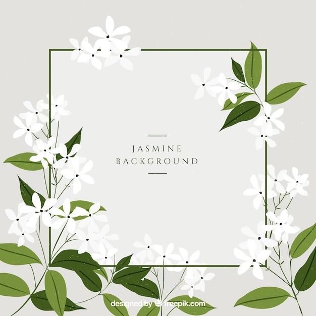 Fundo de jasmim com lindas flores Vetor grátis