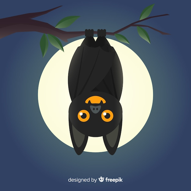 Fundo de morcego halloween em design plano Vetor grátis