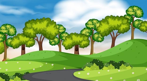 Fundo, de, paisagem, com, árvores, e, estrada, parque Vetor Premium