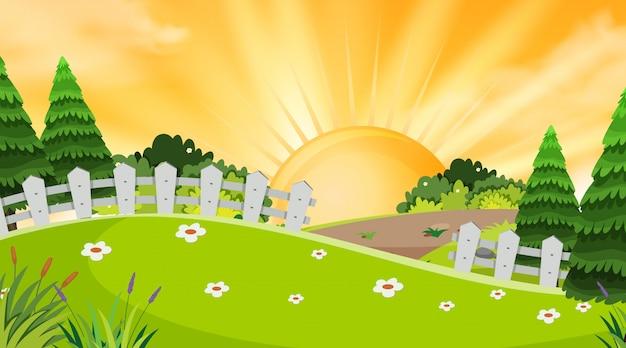 Fundo de paisagem do parque ao pôr do sol Vetor Premium