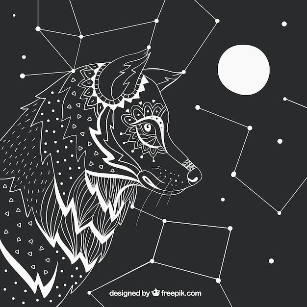 Fundo De Perfil De Lobo Desenhado Mao Com Constelacoes E Lua