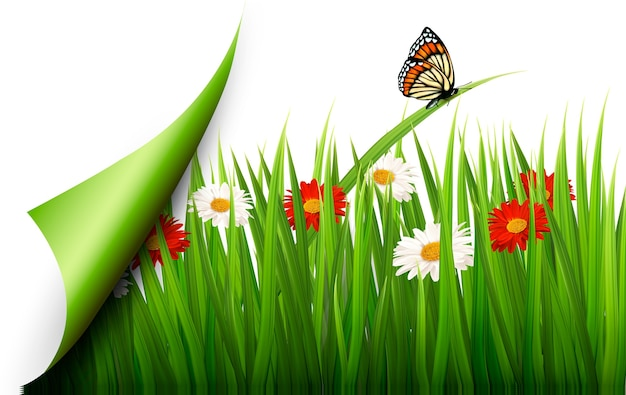 Fundo de primavera com flores, grama e uma borboleta. Vetor Premium