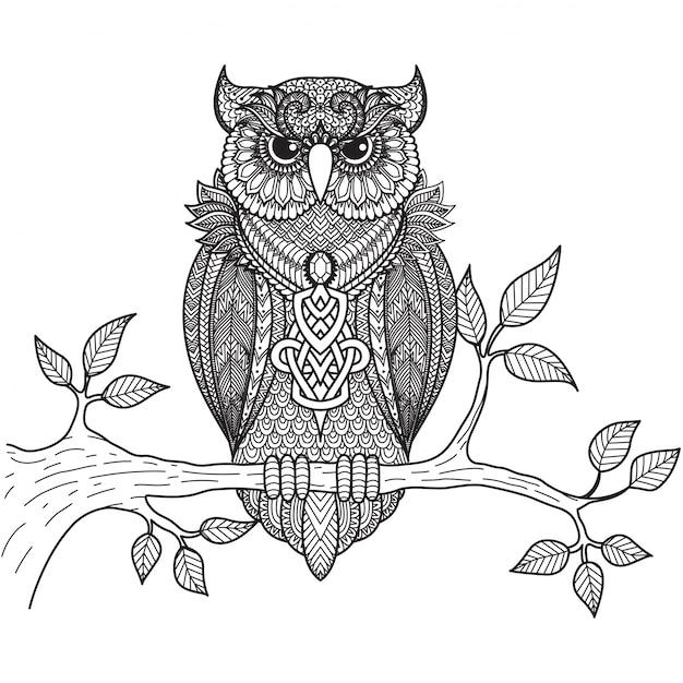 Fundo desenhado mão coruja Vetor grátis