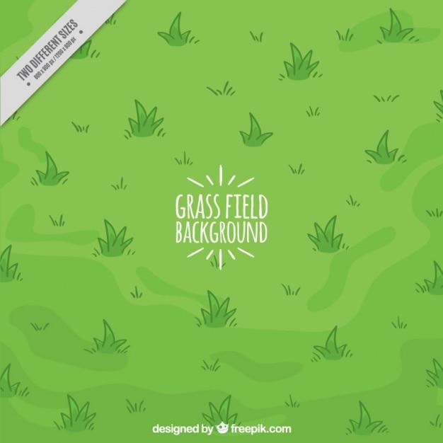 Fundo desenhado mão do campo de grama Vetor Premium