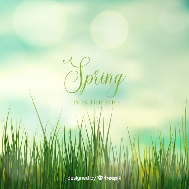 Fundo desfocado primavera Vetor grátis