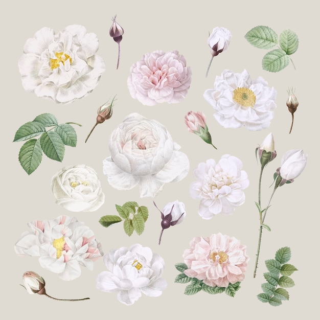 Fundo design floral Vetor grátis