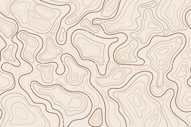 Fundo do mapa topográfico Vetor grátis