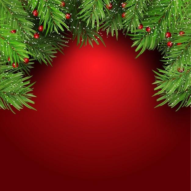 Fundo do Natal com galhos de árvore de abeto e bagas Vetor grátis