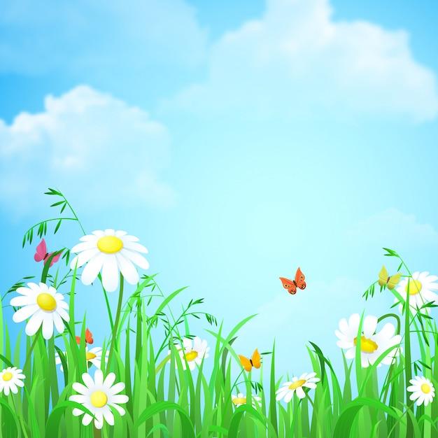 Fundo do verão da mola da natureza com ilustração do céu azul das borboletas de camomila da grama da flor. Vetor Premium