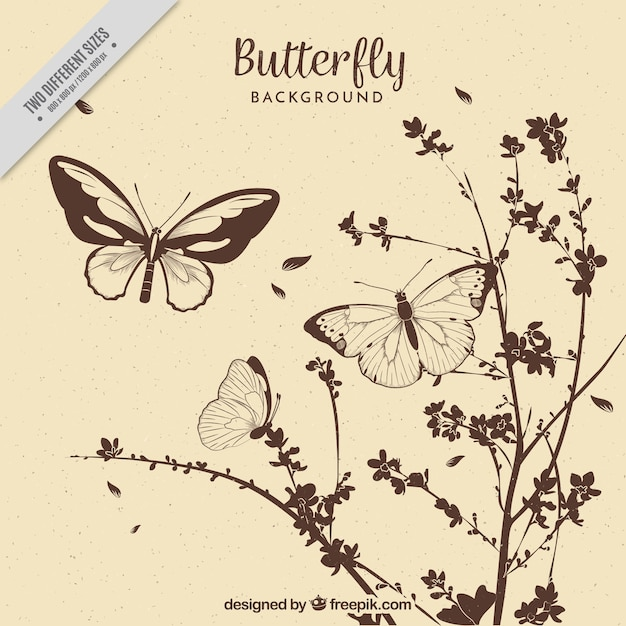Fundo do vintage de flores e borboletas desenhadas mão Vetor Premium