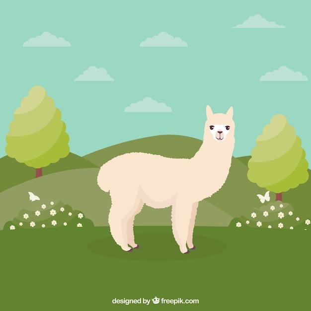 Fundo engraçado de alpaca Vetor grátis