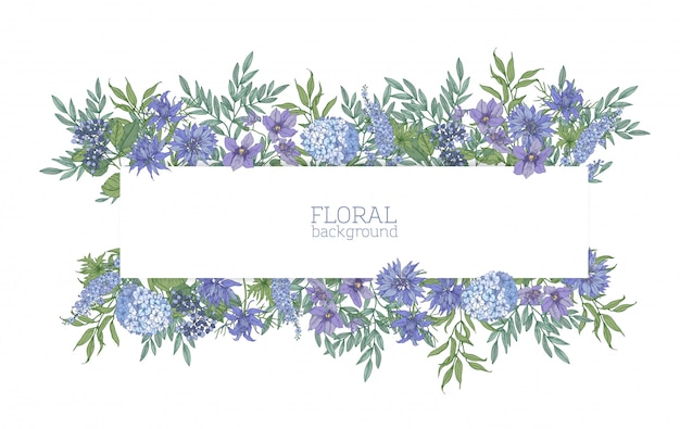 Fundo horizontal ou banner cercado por lindas flores azuis desabrochando selvagens e plantas com flores prado de verão. cenário floral elegante. ilustração natural realista colorida. Vetor Premium
