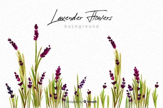 Fundo natural com flores em aquarela Vetor Premium