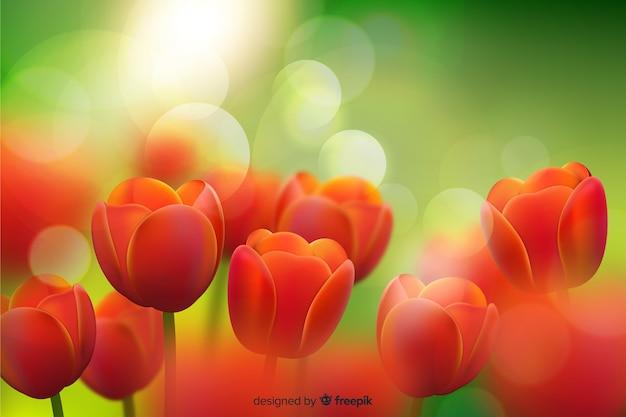 Fundo realista de tulipas de beleza Vetor grátis