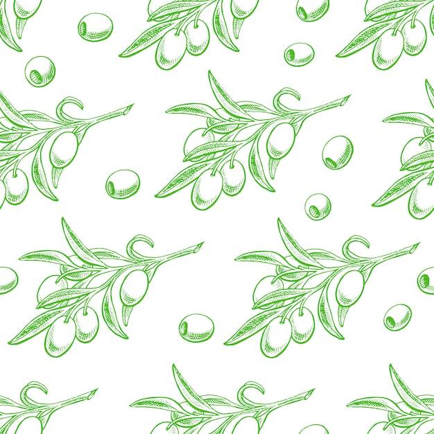 Fundo sem emenda com ramos de oliveira verdes. ilustração desenhada à mão Vetor Premium
