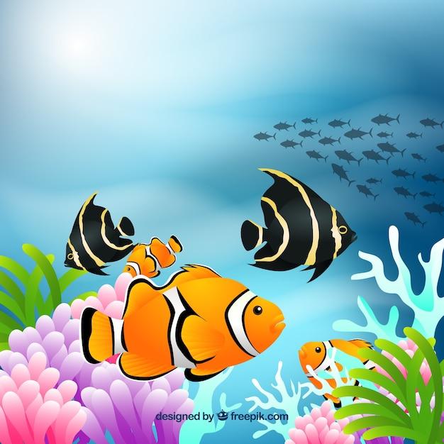 Fundo Subaquatico Com Peixes Coloridos Em Estilo Realista Vetor