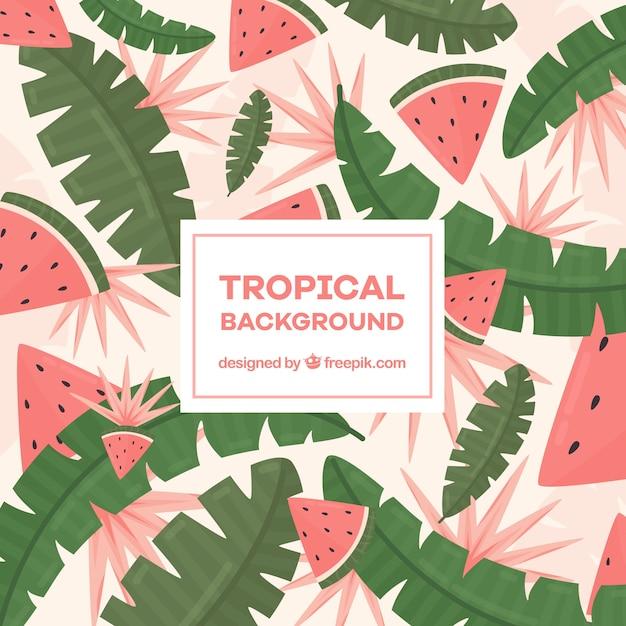 Fundo tropical colorido em estilo simples Vetor grátis