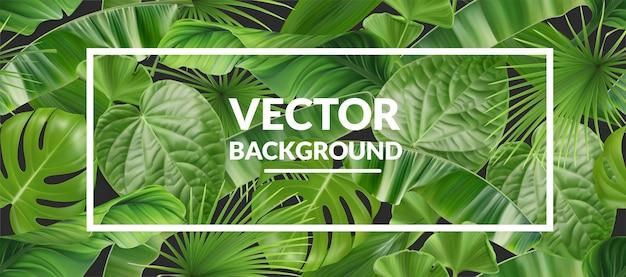 Fundo tropical com foto Vetor Premium