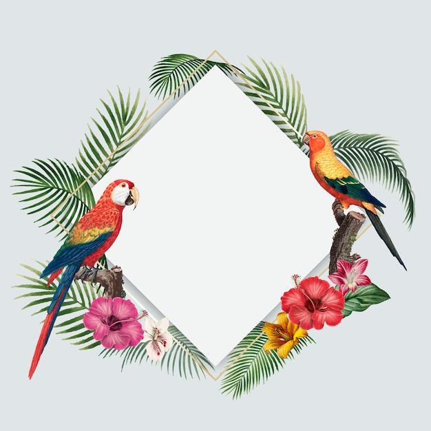 Fundo tropical em branco Vetor grátis
