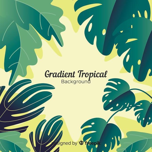 Fundo tropical gradiente Vetor grátis
