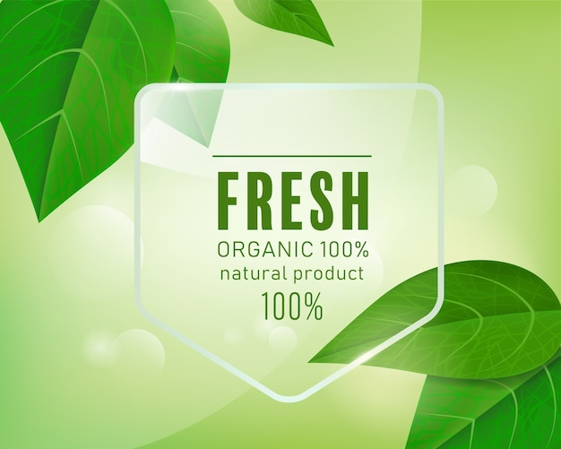 Fundo verde natural da etiqueta orgânica com folhas. Vetor Premium